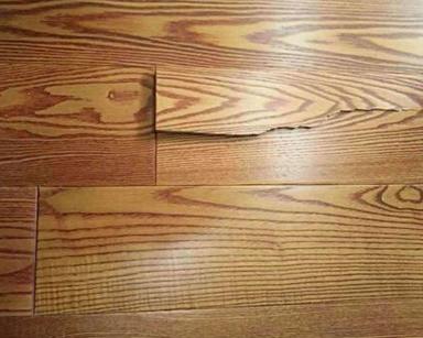 心爱的实木地板怎么防虫?大神这里为你支招!